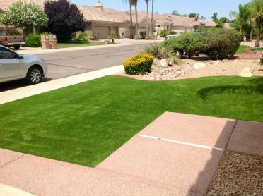 Artificial Grass Photos: How To Install Artificial Grass Bear Valley Springs, California Home And Garden, Front Yard Ideas