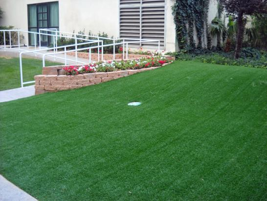 Artificial Grass Photos: Lawn Services Isla Vista, California Outdoor Putting Green, Landscaping Ideas For Front Yard