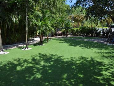 Artificial Grass Photos: Lawn Services Weedpatch, California Rooftop, Commercial Landscape
