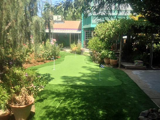 Artificial Grass Photos: Lawn Services Yorba Linda, California Lawn And Garden