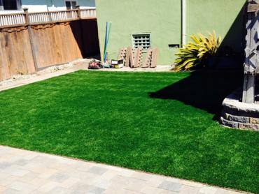 Artificial Grass Photos: Outdoor Carpet Cuyama, California Dog Grass, Backyard