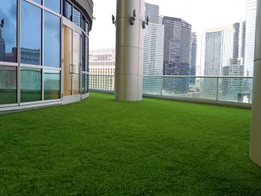 Artificial Grass Photos: Outdoor Carpet Fullerton, California Gardeners, Commercial Landscape