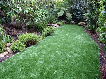 Artificial Grass Photos: Outdoor Carpet Lawndale, California Home And Garden, Backyard Designs