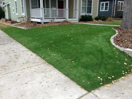 Artificial Grass Photos: Outdoor Carpet Littlerock, California Lawn And Garden, Front Yard Landscape Ideas