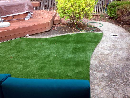 Artificial Grass Photos: Outdoor Carpet Van Nuys, California Landscaping, Backyard Garden Ideas
