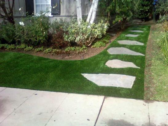 Artificial Grass Photos: Plastic Grass Diamond Bar, California Landscape Design, Front Yard Design