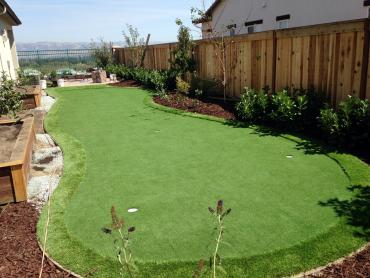 Artificial Grass Photos: Plastic Grass Ladera Heights, California Rooftop, Backyard Landscaping Ideas