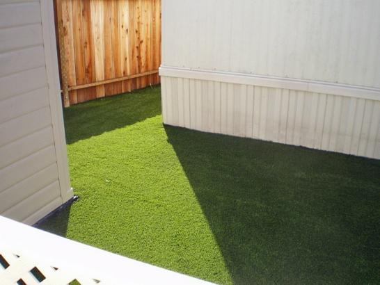 Artificial Grass Photos: Plastic Grass Ladera Heights, California Indoor Dog Park, Small Backyard Ideas