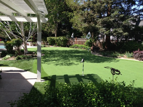 Plastic Grass Mexican Colony, California Landscaping Business artificial grass