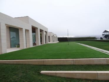 Artificial Grass Photos: Plastic Grass Mission Canyon, California Lawn And Garden, Commercial Landscape