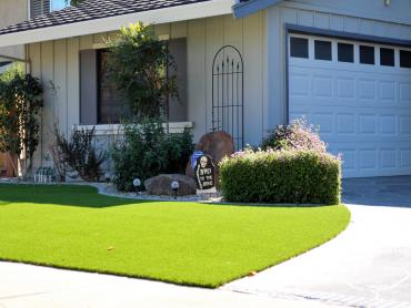 Artificial Grass Photos: Plastic Grass Monterey Park, California Design Ideas, Front Yard Landscape Ideas