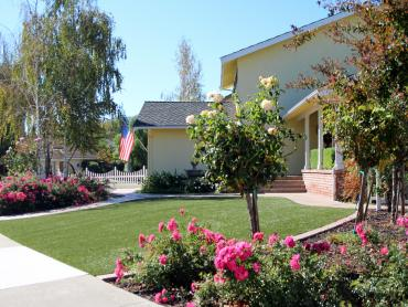 Artificial Grass Photos: Plastic Grass Vincent, California Landscape Design, Front Yard Landscaping