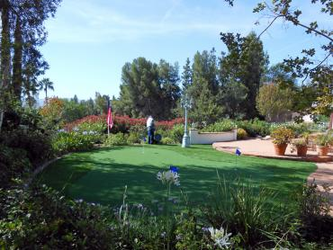 Artificial Grass Photos: Plastic Grass Woodland Hills, California Landscape Rock, Small Backyard Ideas