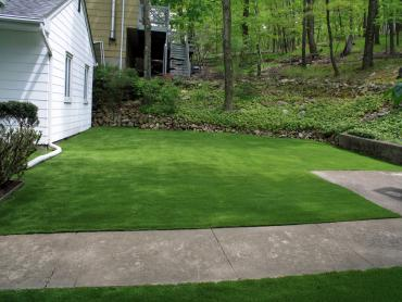 Artificial Grass Photos: Plastic Grass Yorba Linda, California Landscaping, Front Yard Landscaping Ideas