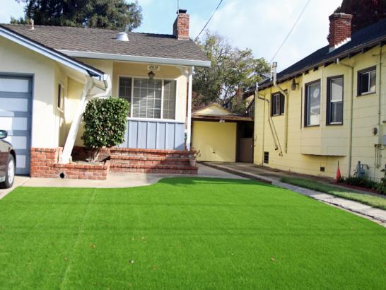 Artificial Grass Photos: Synthetic Grass Cost Castaic, California Landscaping Business, Front Yard Landscaping