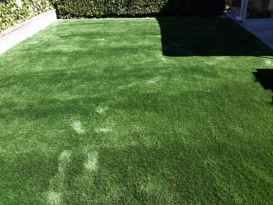 Artificial Grass Photos: Synthetic Grass Cost La Habra Heights, California Watch Dogs, Backyard Landscape Ideas