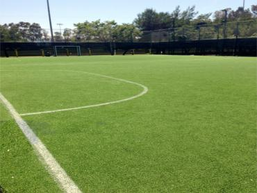 Artificial Grass Photos: Synthetic Grass Cost Quartz Hill, California Stadium