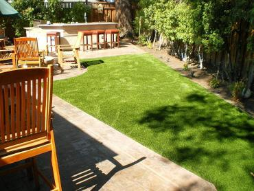 Artificial Grass Photos: Synthetic Grass Cost Rolling Hills, California Pet Grass, Backyard Makeover