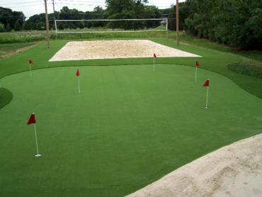 Artificial Grass Photos: Synthetic Grass Cost San Marino, California Best Indoor Putting Green, Backyard Makeover