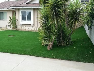 Artificial Grass Photos: Synthetic Grass Cost South Gate, California Backyard Deck Ideas, Front Yard Landscaping Ideas
