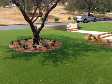 Artificial Grass Photos: Synthetic Grass Cost West Hills, California Roof Top, Small Front Yard Landscaping