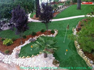 Synthetic Grass Ventura, California Backyard Playground, Backyard Landscape Ideas artificial grass