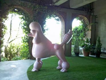 Synthetic Lawn Las Flores, California Pictures Of Dogs, Backyard artificial grass
