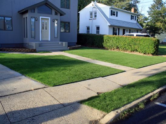 Artificial Grass Photos: Synthetic Lawn Pomona, California Landscape Design, Front Yard Design