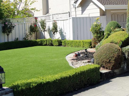Artificial Grass Photos: Synthetic Turf Goleta, California Rooftop, Front Yard Landscaping Ideas