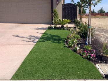 Artificial Grass Photos: Synthetic Turf Port Hueneme, California Landscape Ideas, Front Yard Landscape Ideas