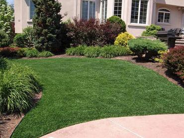 Artificial Grass Photos: Synthetic Turf Supplier Carson, California City Landscape, Front Yard Landscaping