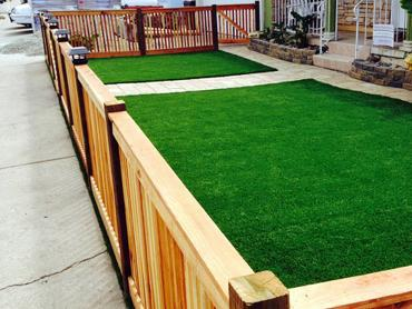 Artificial Grass Photos: Synthetic Turf Supplier North Glendale, California Landscape Photos, Front Yard Landscaping Ideas