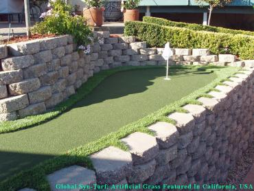 Synthetic Turf Supplier Oxnard, California Best Indoor Putting Green, Backyard Makeover artificial grass