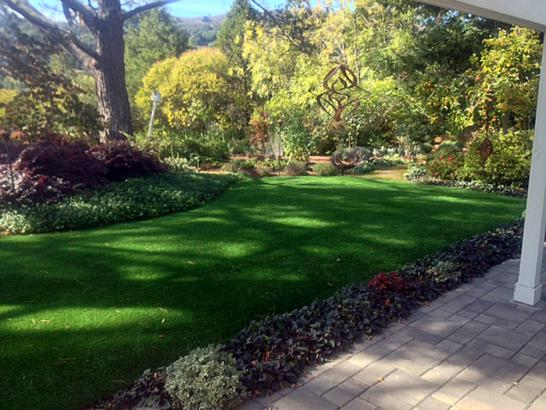 Artificial Grass Photos: Synthetic Turf Supplier Santa Ana, California Landscaping, Backyard Makeover