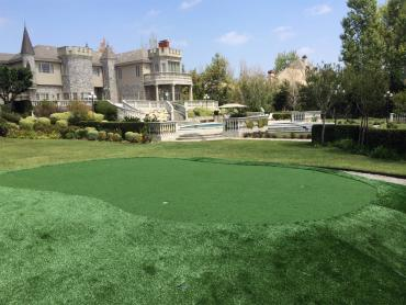 Turf Grass Isla Vista, California City Landscape, Landscaping Ideas For Front Yard artificial grass