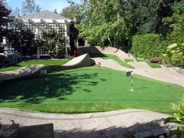 Artificial Grass Photos: Turf Grass Pasadena, California City Landscape, Backyards