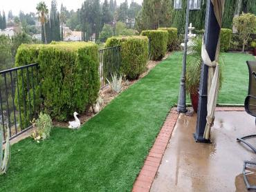 Turf Grass West Rancho Dominguez, California Landscaping Business, Backyard Landscaping Ideas artificial grass